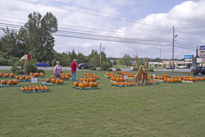 Picture from Fall Festival 2017